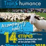 Transhumance 2019